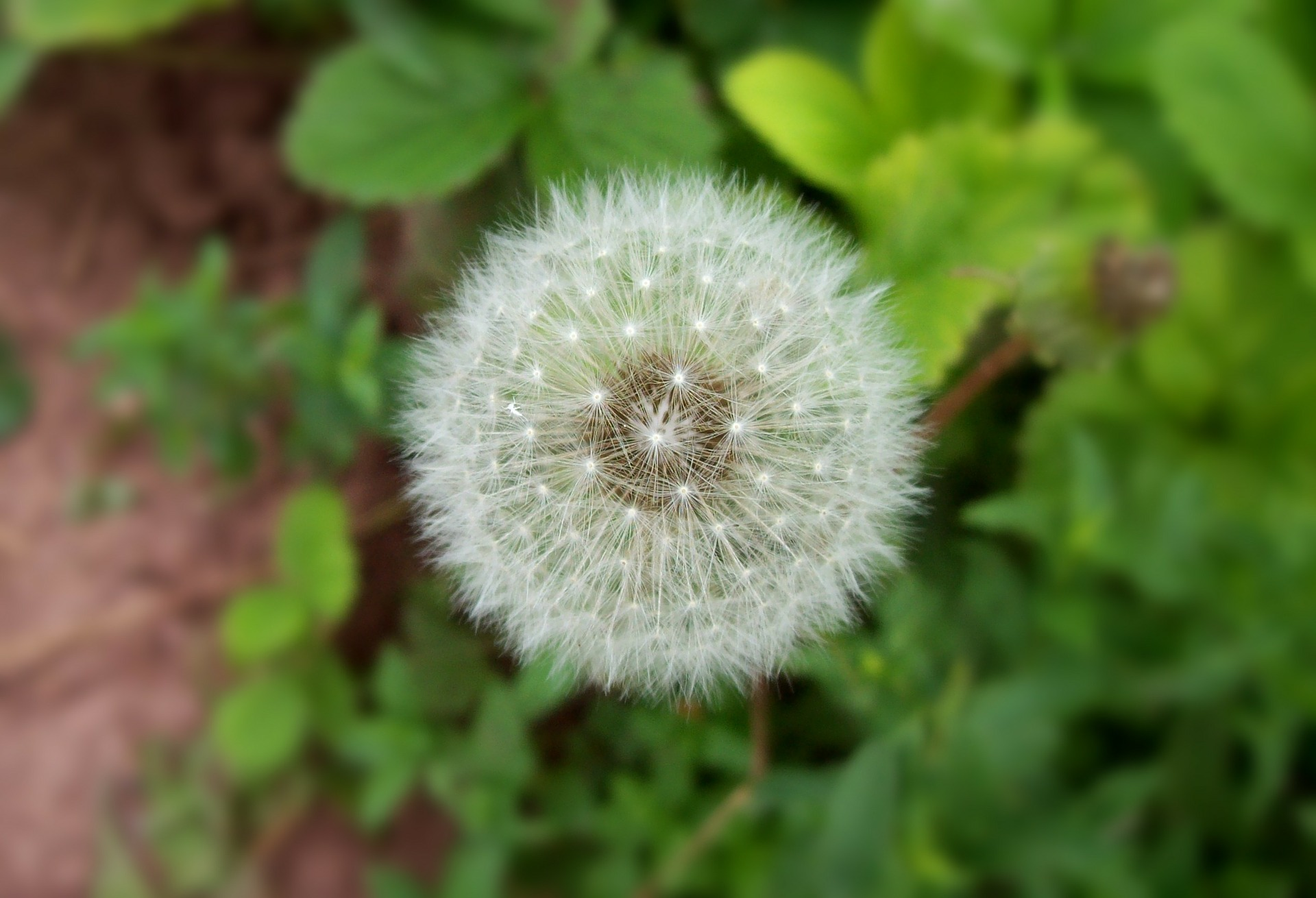 is hayfever getting you down